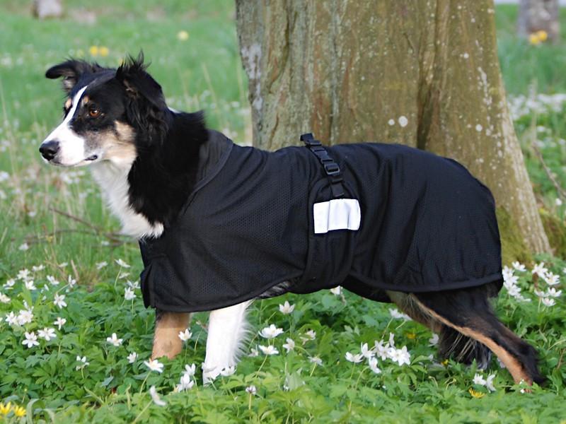 Back on Track Hund Nättäcke Small rygglängd 21-40 cm