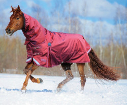Shires StormCheeta Combo vintertäcke med fast hals